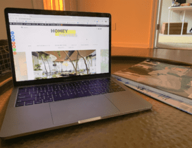 one year of blogging - homeyhomies blog