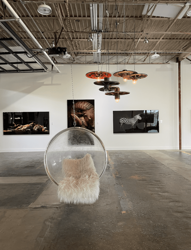 Art gallery with a hanging circulat chair and safar photography in the background - The Works ATL - most instagrammable places in atlanta